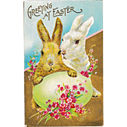 "Uncirculated Antique Stecher Easter Bunny Rabbits ""Greeting at Easter"" Postcard"