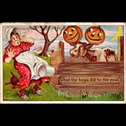 Antique Julius Bien Halloween Postcard  980 Series; No. 9804