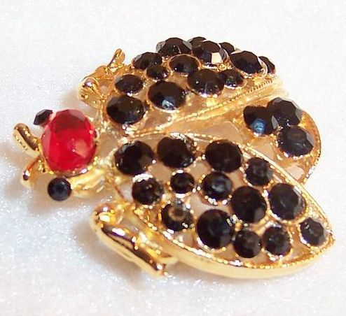 Vintage Black & Red Beetle Bug Pin