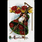 Antique Glossy Christmas Poinsettias & Santa Postcard