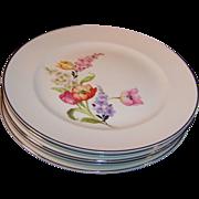 Pope Gosser China Flanders Dinner Plates  (Tulip, Poppy, Snapdragons)