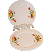 "Set of 2: Homer Laughlin Poppy & Rose 7""  Plates"