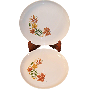 SET of 2:  Salem China Autumn Leaves Dinner Plates