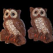 Set of 2: Vintage Owl Plaques