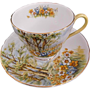 Vintage Shelley Cup and Saucer Fine Bone China Daffodil Time