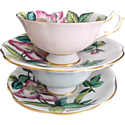 Rosina Bone China Vintage Cups Saucers Wild Roses by A. Bentley Pair