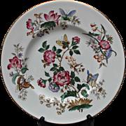 Wedgwood Bone China Charnwood Dinner Plate Vintage Flowers Butterflies