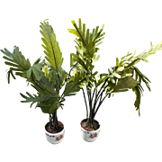 Vintage Doll House Potted Plants Green Ferns in Ceramic Pots