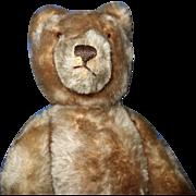 Steiff Teddy Bear Mohair raised button in ear