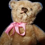 Small  1950 Mohair Teddy Bear