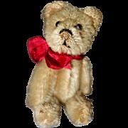 Schuco Teddy Bear