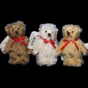 Gund Trio Tiny Teddy Bears mohair fully tagged