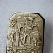 Very unusual and interesting- celluloid brooch