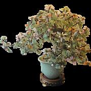 Jade tree-amazing workmanship