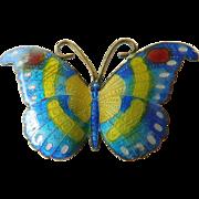Enameled butterfly Pin