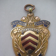 SALE: Welsh Vintage Copper/Enamel  GLAMORGAN Medal