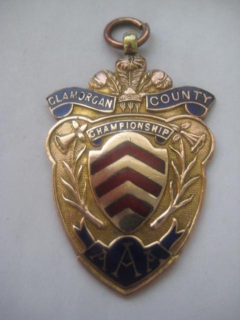 SALE: Welsh Vintage Copper/Enamel  GLAMORGAN Medal