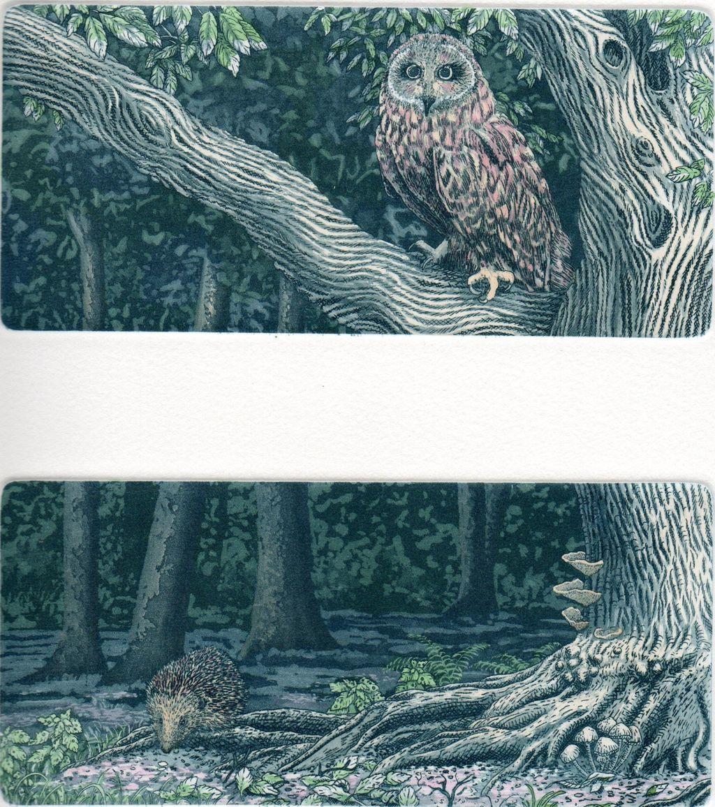 Owl and Hedgehog, Original Etchings by Laura Boyd