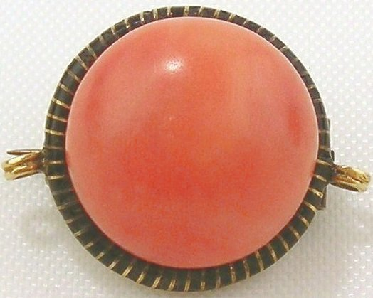 Coral Brooch/Pendant-14kt Yellow Gold