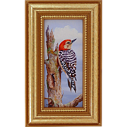 Red Head Woodpecker-Miniature Oil Painting