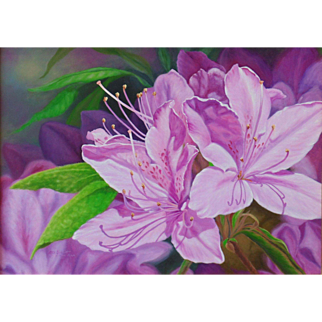 Original Oil Painting by Bev Abbott - Azaleas