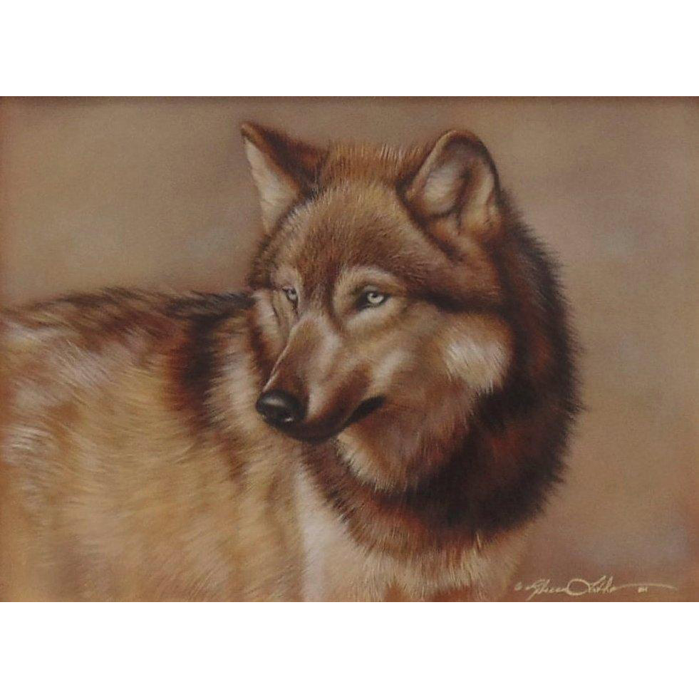 Caught His Eye–Wolf, Original Watercolor Painting by Rebecca Latham