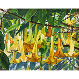 Trumpet Tangle, Original Oil Painting on Linen by Lee Mims