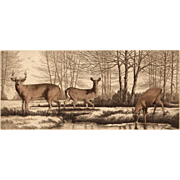 White Tails, Original Etching by Listed Artist-David Hunter
