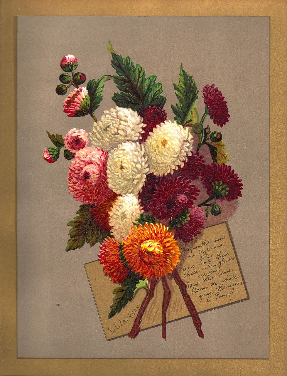 Antique PRINT - 'CHRYSANTHEMUMS' ~ Victorian Chromolithograph c.1880s