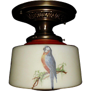 Decorated Brass Ceiling Fixture with Colorful Parrot Glass Shade