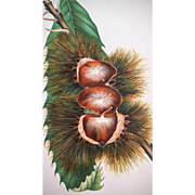 Antique Paragon Chestnut Chromolithograph Print