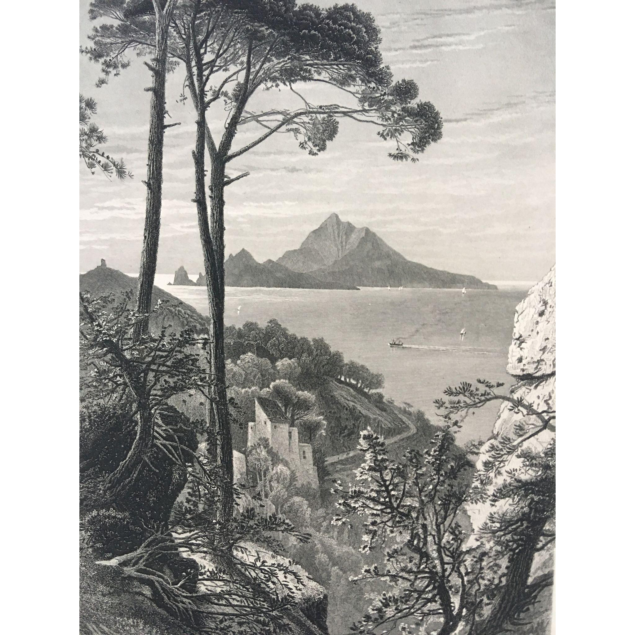 19th Century Harry Fenn Steel Engraving of Capri , Italy