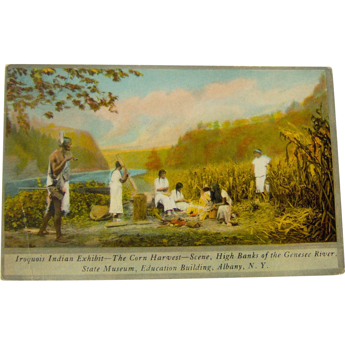 Vintage Iroquois Indian Exhibit The Corn Harvest
