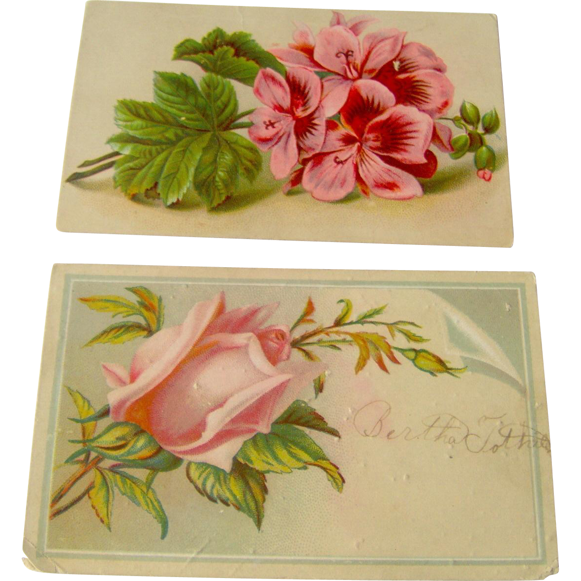 Floral Calling Cards