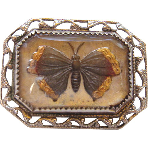 Reverse Painted GOOFUS Glass Paperweight Butterfly Pin