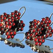 Antique Garnet Earrings.  Pierced.