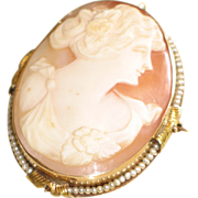 Antique 14k Gold Shell Cameo and Seed Pearl Pin/Brooch.