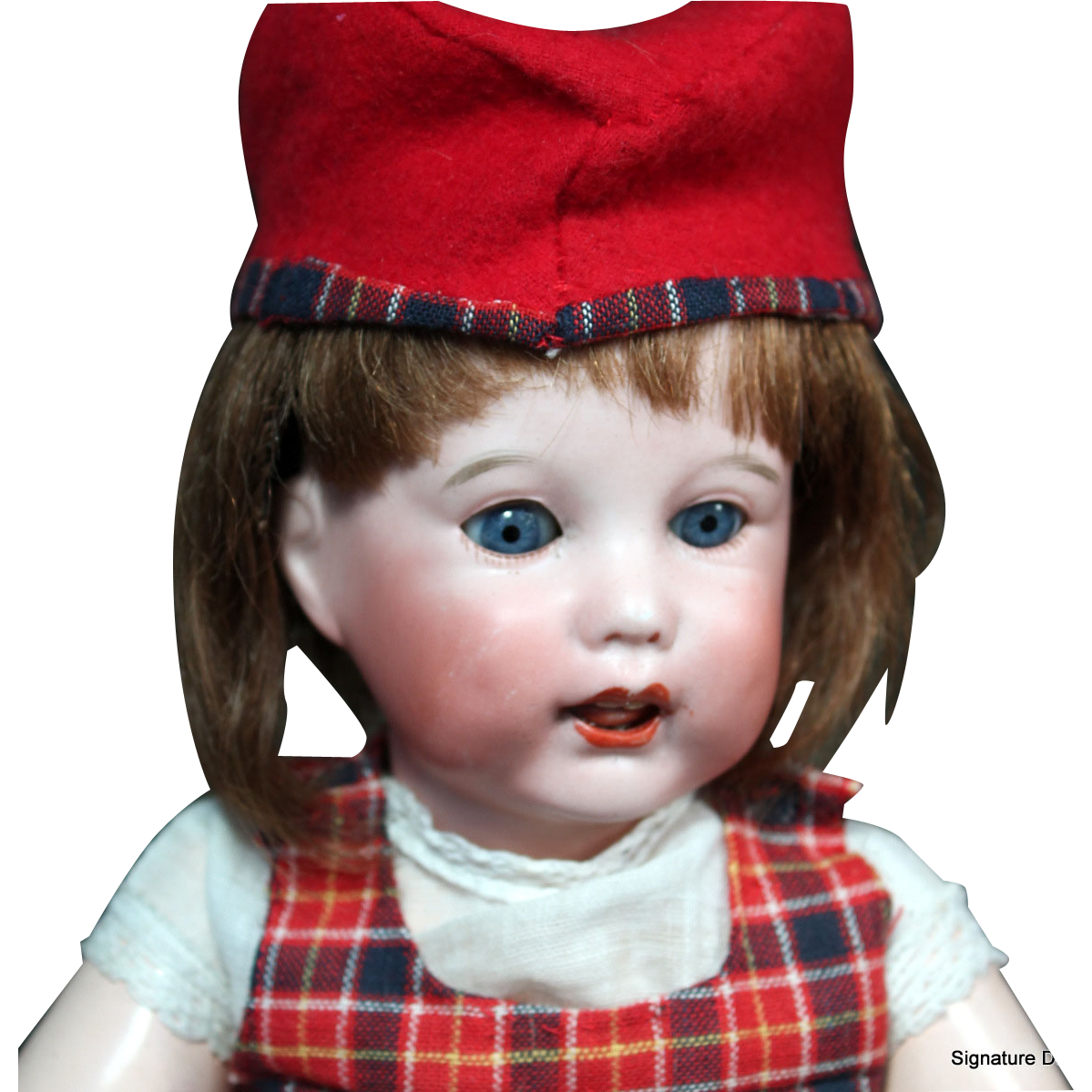 """SFBJ 251 as Bleuette's Older Sister 14"""""""