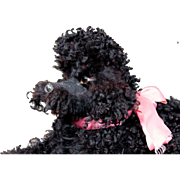 French Poodle Boudoir Pajama Dog with a Fantastic Face