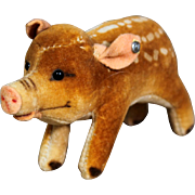 Steiff Speckled Velvet  Young Wild Boar w button –1950's