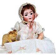 Schmidt Franz & Co 1295 Bisque Character Baby