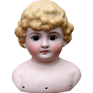 Molded Hair Bisque Child Doll with Glass Eyes ~ Dmg. Bargain