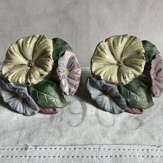 Beautiful 1920's Waverly Studios Cast Iron Morning Glory Flowers Curtain Tie Backs