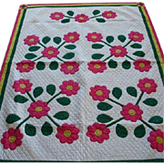 Vintage Hand Stitched Rose of Sharon Applique Quilt Top