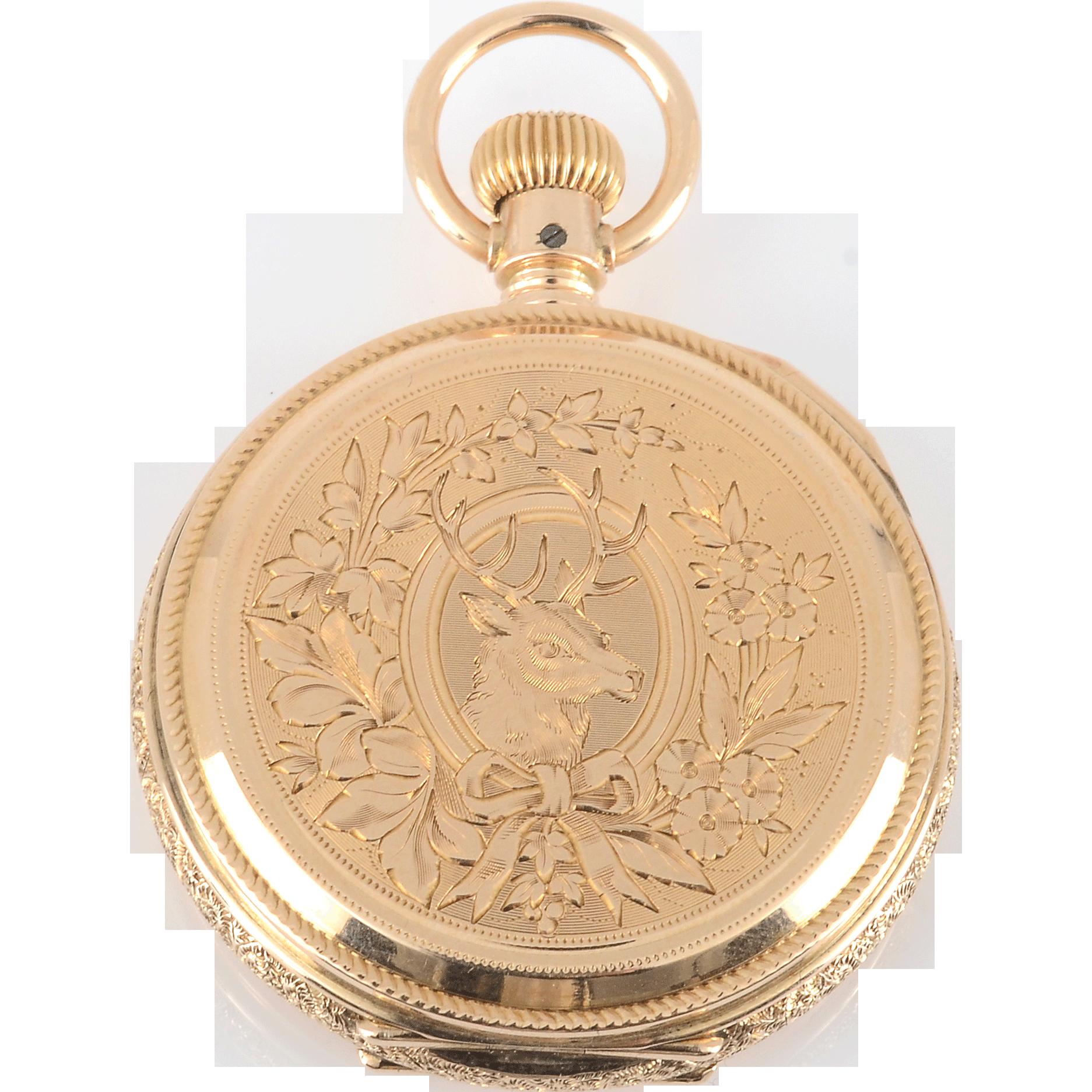 American Hunter Case Pocket Watch by Elgin