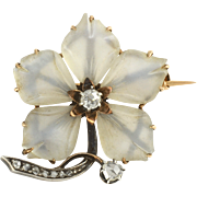 Carved Camphor Glass Flower Brooch with Diamonds
