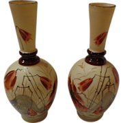 Set Of 2 Bristol Vases