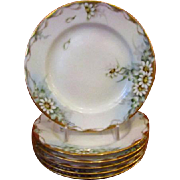 Rosenthal Selb Bavaria Set of 6 Small Plates