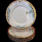 Rosenthal Selb Bavaria Set of 6 Dinner Plates