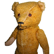 Sweet Old Mohair Teddy Bear